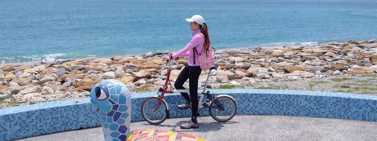 巷口車-南濱公園盡頭萌萌彩色大海龜和自行車花蓮旅遊